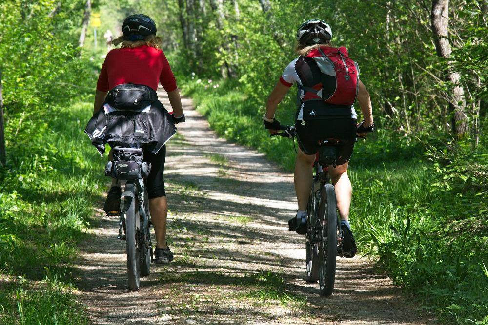 Fahrradfahrer auf einem Waldweg von hinten fotografiert.