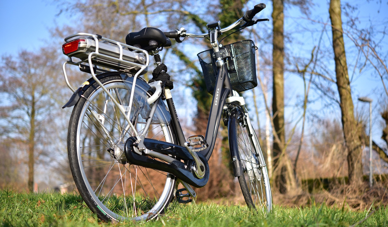 E-Bike auf einer Wiese vor einem Wald